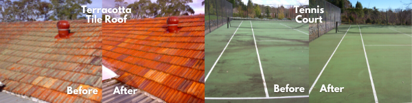 Image with a before and after pictures of a lichen affected terracotta tile roof and a mould affected tennis court.