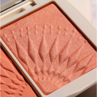 Professional Cheek Makeup Blusher Palette iciCosmetic™