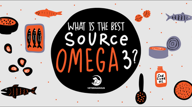 Best source for Omega-3s for Dogs