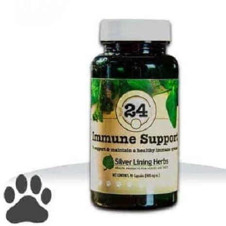 24 Immune Support Supplement for Dogs, 90 capsule bottle of dog supplements