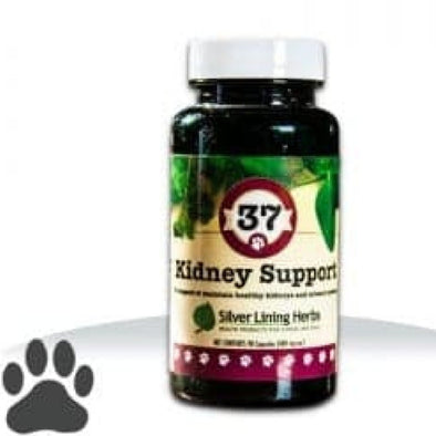 Silver Lining Herbs 37 Kidney Support Formula for Dogs, front of bottle