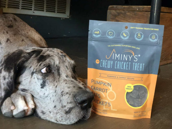 Chewy Cricket Treats for Dogs - Pumpkin & Carrot, dane with treats