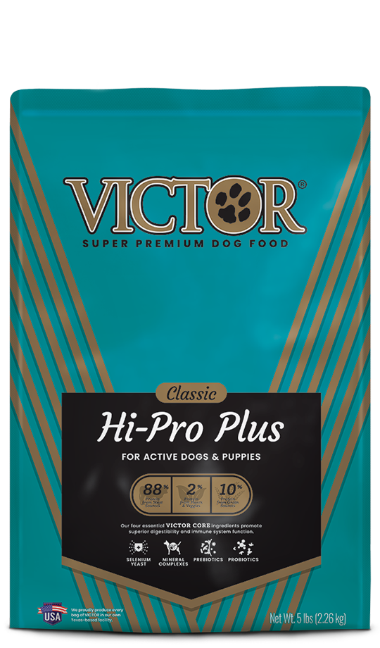 VICTOR Hi-Pro Plus Dog Food for Active Dogs & Puppies, front of bag-blue