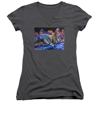 Badlands, Two Buffalo Play Fighting - Women's V-Neck