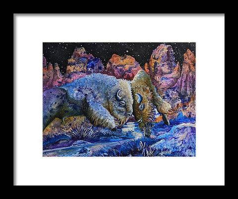 Badlands, Two Buffalo Play Fighting - Framed Print