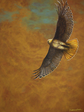 """Red Tail Hawk"", Also Known as ""Little Brother"", Original Painting"