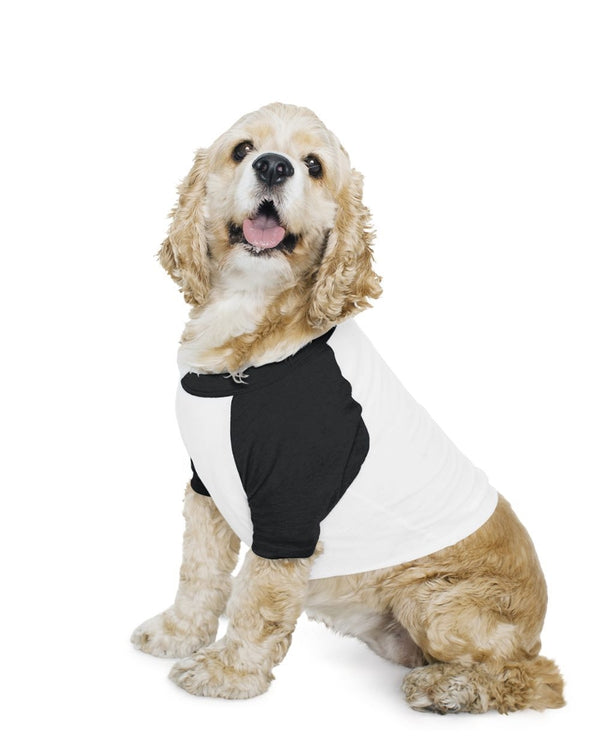 Dog Poly/Cotton Three-Quarter sleeve Raglan Tee-American Apparel-Pacific Brandwear