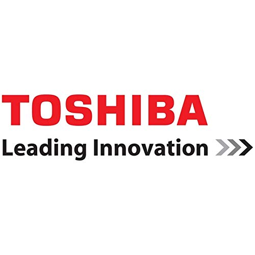 Toshiba 14IN Business Carrying CASE