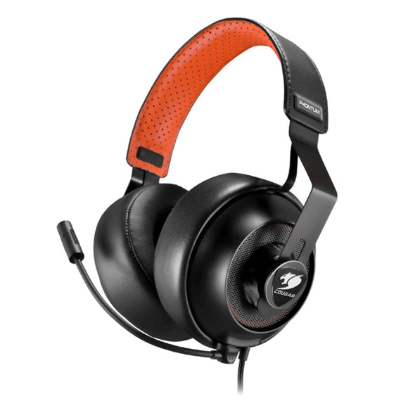 PHONTUM Gaming Headset with Detachable Microphone and Swappable Earpads PC/Mac/Linux