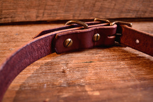 Dog Collar - Dark Brown