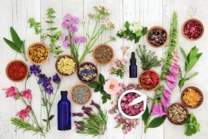 assortment of flowers and herbs