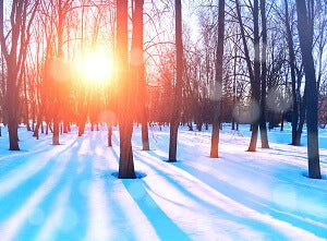 enjoy winter sunshine to stay healthy this winter