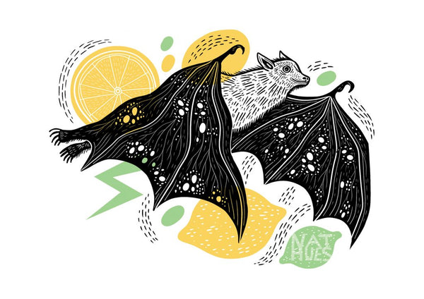 A3 Fruit Bat Art print