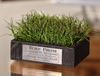 Turf Desk Stand Display | Arkansas Razorback Turf Relic