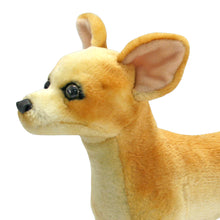Load image into Gallery viewer, Chihuahua - Plush