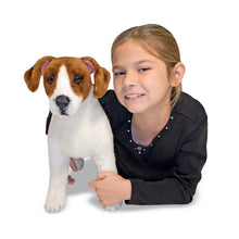 Load image into Gallery viewer, Jack Russell Terrier - Plush