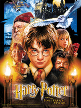 Load image into Gallery viewer, Harry Potter and the Sorcerer's Stone - 550pc Puzzle