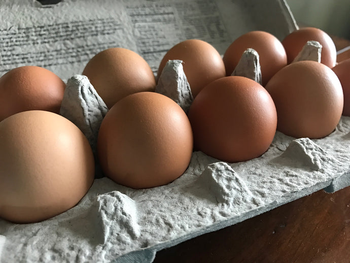 Pasture Raised Eggs (Does NOT Ship-Read Below)