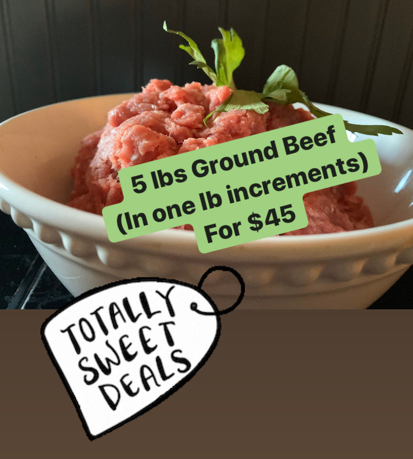 Ground Beef 1 lb x 5