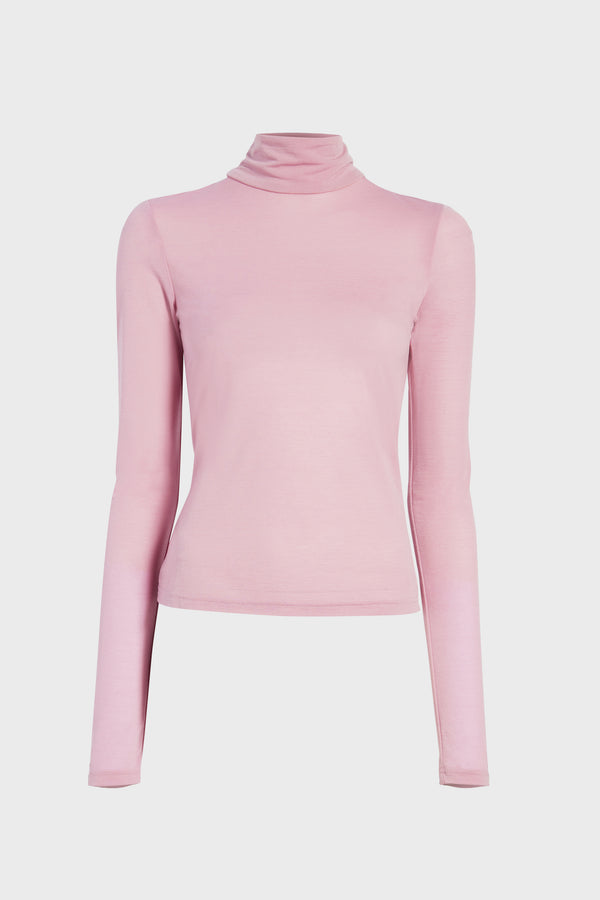 Semi-Sheer Knit Turtleneck