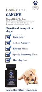 HealX Canine Brochure Card - Quantity 50