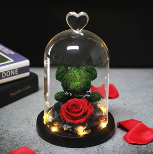 Rose Teddy Bear in Glass Dome