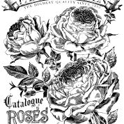 Catalogue of Roses paintable transfer - IOD