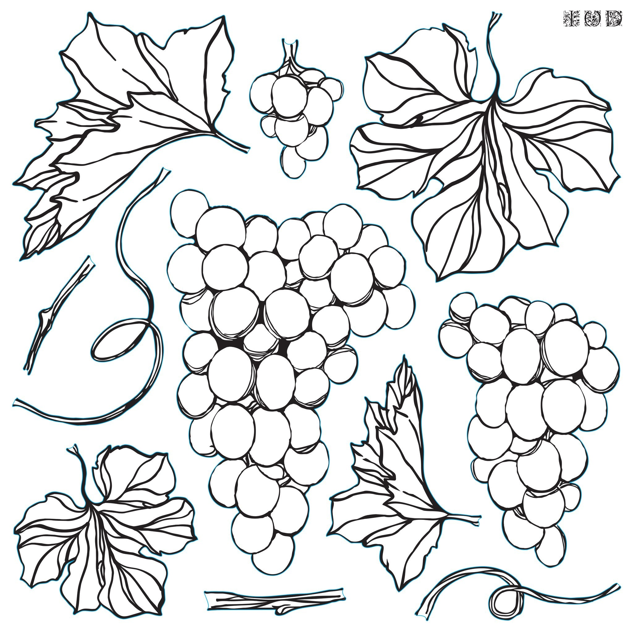 Grapes- IOD decor stamp - PREORDER
