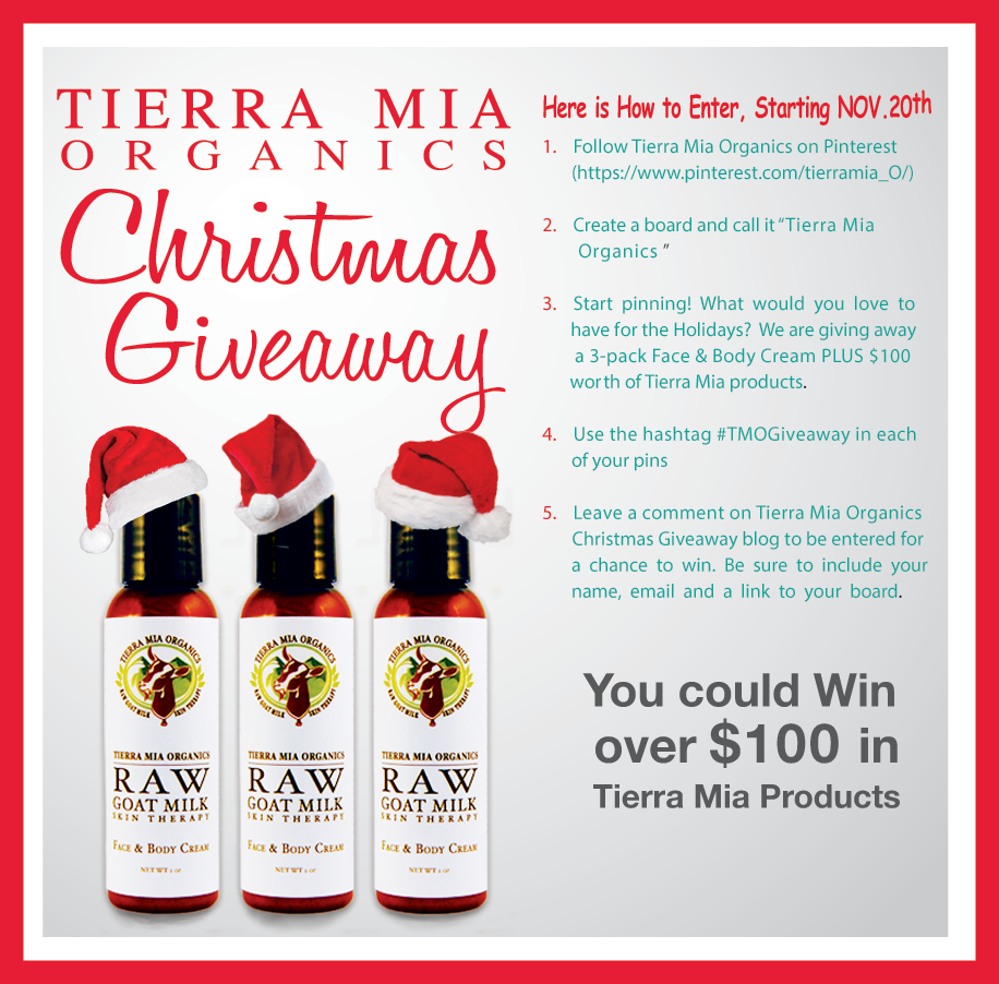 Pin It to Win It Christmas Giveaway!