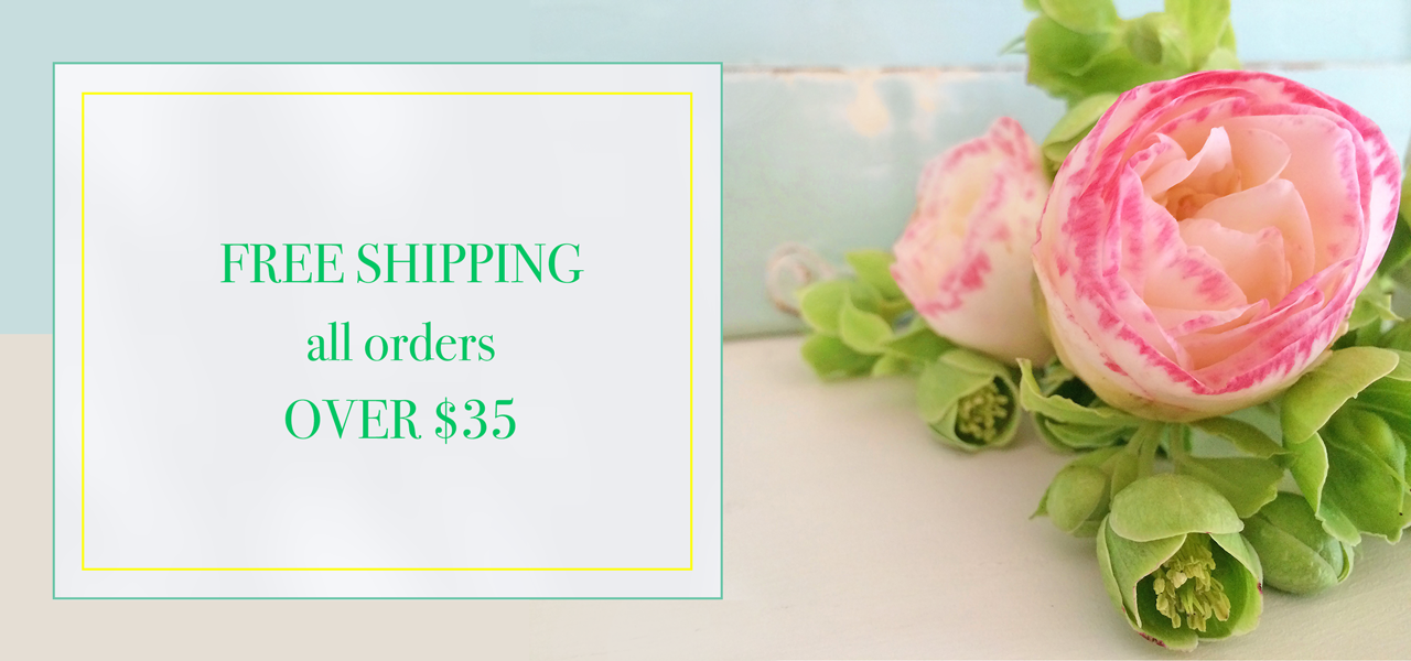 free-shipping-banner-with-fresh-pink-flower-and-blue-painted-based-board