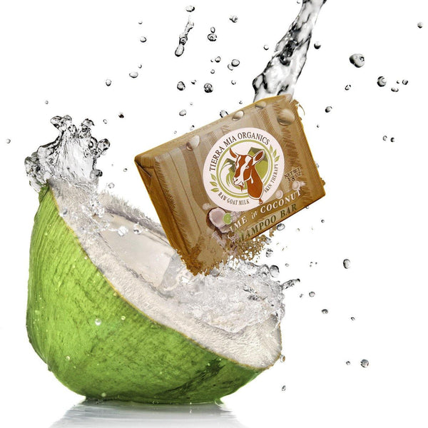 Tierra Mia Organics Lime in Coconut Shampoo Bar in Splash of real coconut