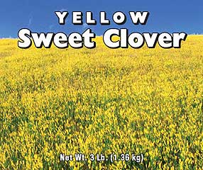 CLOVER YELLOW SWEET 3 LB