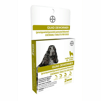 BAYER QUAD DEWORMER MEDIUM DOG 68 MG 2 CT