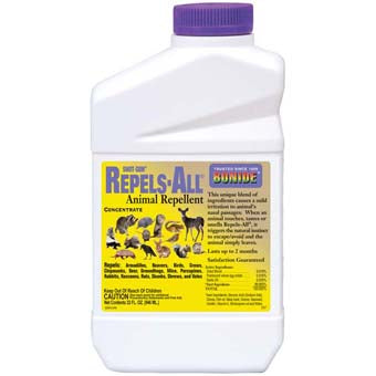 Shot-Gun Repels All Animal Repellent Concentrate Qt