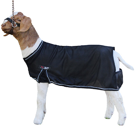 SS Cool Tech Goat Blanket XLG Black