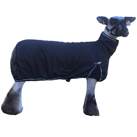 SS Cool Tech Sheep Blanket Black XLG