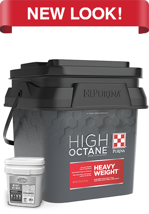 Purina Hi Octane Heavy Weight