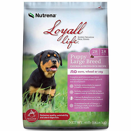 Loyall Life Large Breed Puppy Chicken & Rice 23-13 40lb