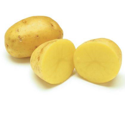 POTATOES YUKON