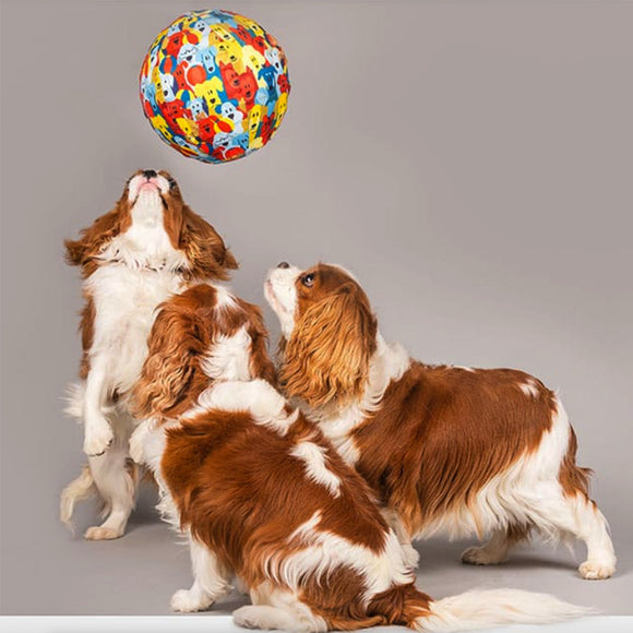 PetBloon Dog Ball