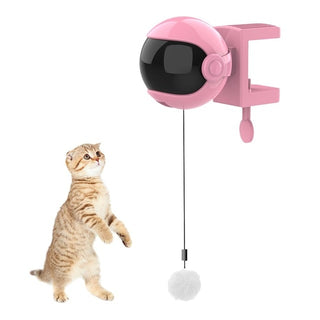 Electric Cat Toy Interactive Toy For Cat Yo-Yo Game Lifting Ball Pet Retractable Rope Intelligence Toy