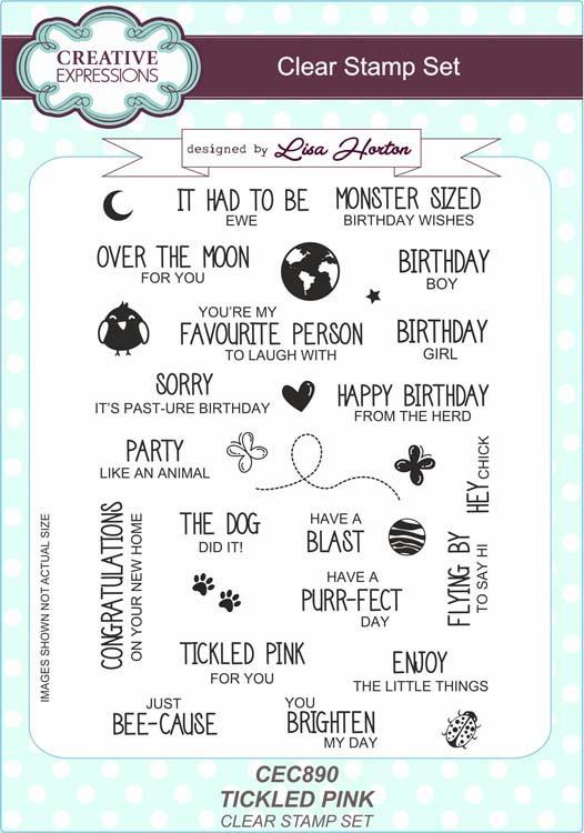 Creative Expressions Tickled Pink Sentiments A5 Clear Stamp Set