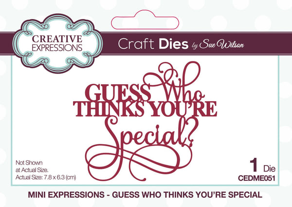 Dies by Sue Wilson Mini Expressions Guess Who Thinks Your Special