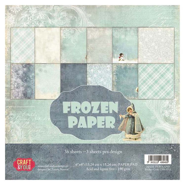 Craft & You Design Frozen Paper 6x6 Paper Pad
