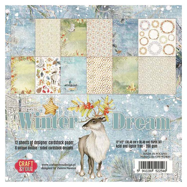 Craft & You Design Winter Dream 12x12 Paper Set