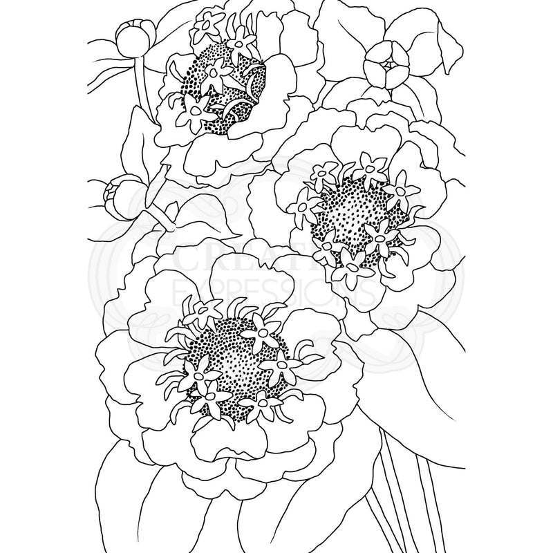 Woodware Clear Singles Zinnia 4 in x 6 in Stamp