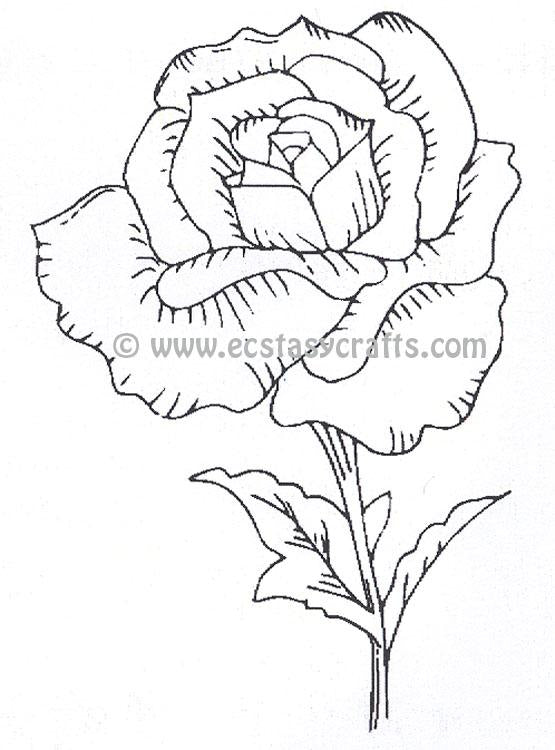 Creative Expressions: Tea Rose Pre Cut Stamp