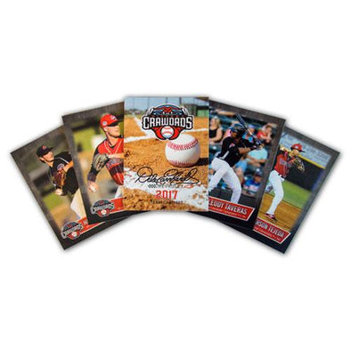 Hickory Crawdads 2017 Team Set #2