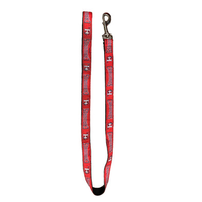 Hickory Crawdads Dog Leash