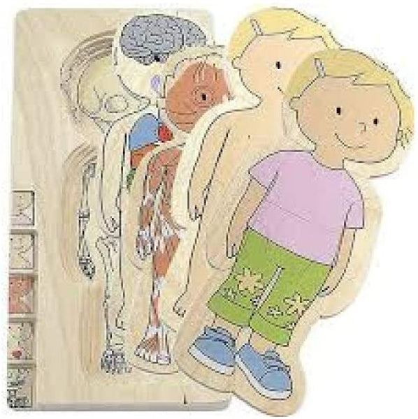 HAPE Your Body 5 layers wooden puzzle  -GIRL, BOY